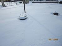 Зима в саду Dt-3WZB