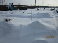 Зима в саду Dt-ALJN