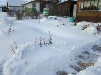 Зима в саду Dt-D35K
