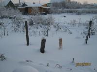 Зима в саду - Страница 2 Dt-DABF