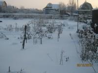 Зима в саду - Страница 2 Dt-MQCB