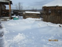 Зима в саду Dt-QZKI